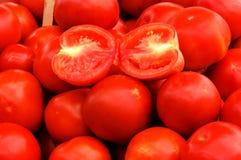 Tomates frescos Fotografia de Stock Royalty Free