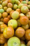 Tomates frescos Foto de Stock