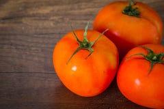 Tomates frescos imagem de stock royalty free