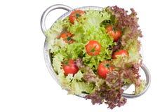Tomates frescos com salada Fotografia de Stock Royalty Free