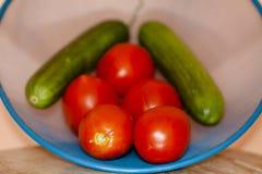 Tomates frescos con los pepinos en el tamiz Fotografía de archivo libre de regalías