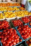Tomates frescos de la cereza y de la uva Foto de archivo libre de regalías