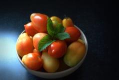 Tomates frescos del jardín Imagen de archivo libre de regalías