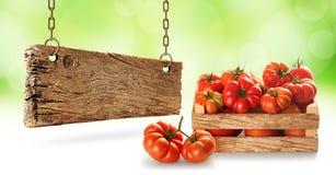 Tomates frescos del pueblo en caso de madera imagen de archivo libre de regalías