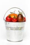 Tomates frescos em um balde no fundo branco Imagem de Stock Royalty Free