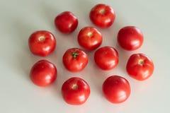 Tomates frescos em uma tabela de vidro branca Colhendo tomates Vista superior fotografia de stock royalty free