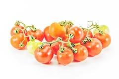 Tomates frescos en blanco Imagen de archivo libre de regalías