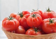 Tomates frescos en cesta Imagenes de archivo
