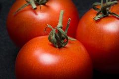 Tomates frescos en el fondo verde de la colza Imagen de archivo libre de regalías