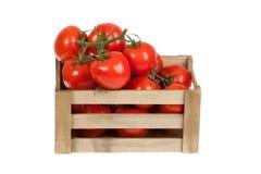 Tomates frescos en un aislante del cajón de madera en un blanco Fotografía de archivo