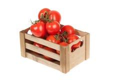 Tomates frescos en un aislante del cajón de madera en un blanco Fotografía de archivo libre de regalías