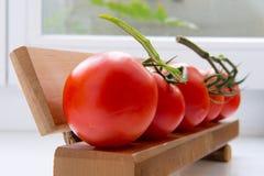Tomates frescos en un banco Imagenes de archivo