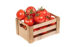 Tomates frescos en un cajón de madera aislado Imagen de archivo libre de regalías