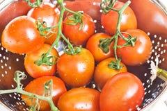 Tomates frescos en un colador Imágenes de archivo libres de regalías