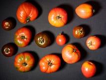 Tomates frescos en un fondo gris Visión superior Imagenes de archivo