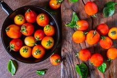 Tomates frescos en una cacerola en un fondo de madera imagen de archivo
