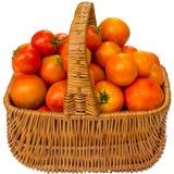 Tomates frescos en una cesta en un fondo blanco Imágenes de archivo libres de regalías