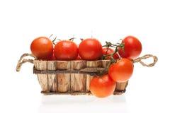 Tomates frescos en una vid en una cesta de madera Fotos de archivo libres de regalías