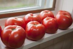 Tomates frescos en windowsill   Foto de archivo
