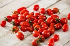Tomates frescos Fundo vermelho dos tomates Grupo de tomates Fotografia de Stock