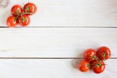 Tomates frescos, maduros Fotografia de Stock Royalty Free