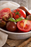 Tomates frescos maduros em uma bacia Foto de Stock Royalty Free