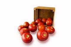 Tomates frescos na videira e em um corte uma em uma caixa de madeira na Fotografia de Stock