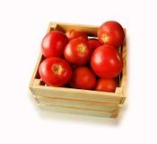 Tomates frescos na videira em uma caixa de madeira em um backgrou branco Fotos de Stock