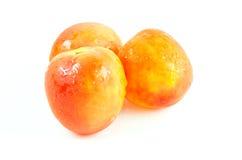 Tomates frescos no fundo branco Foto de Stock
