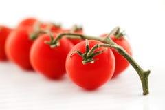 Tomates frescos orgánicos en la vid Fotos de archivo