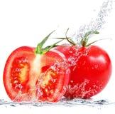 Tomates frescos que caem na água Foto de Stock Royalty Free