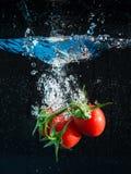 Tomates frescos que caen en agua Fotos de archivo