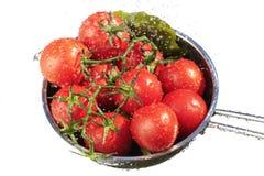 Tomates frescos que se lavan Foto de archivo