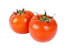 Tomates frescos sobre o branco Imagem de Stock