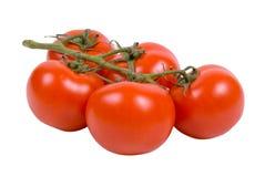 Tomates frescos vermelhos no fundo isolado Fotos de Stock Royalty Free