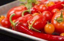 Tomates frescos y otras verduras en una cacerola de la hoja Fotos de archivo