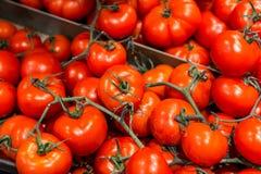 Tomates fruit et fond et texture de végétarien photographie stock