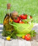 Tomates, garrafa de azeite, abanador da pimenta e manjericão maduros frescos Imagens de Stock