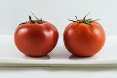 2 tomates grandes Imagens de Stock Royalty Free