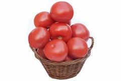 Tomates grandes en la cesta Fotografía de archivo libre de regalías