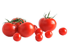 Tomates grandes y pequeños en el fondo blanco Fotos de archivo