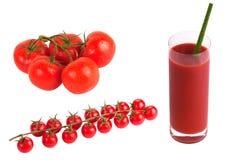 Tomates herry de ¡ de Ð sur la branche image libre de droits
