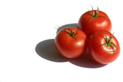 Tomates III Imagem de Stock Royalty Free
