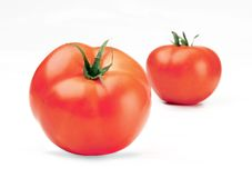 Tomates isolados Fotografia de Stock