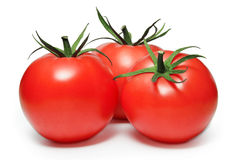 Tomates isolados no branco Fotografia de Stock