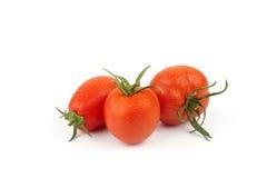 Tomates isolados suculentos Fotografia de Stock