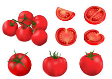 Tomates isolados vetor Fotos de Stock