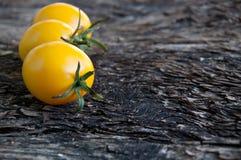 Tomates jaunes Photographie stock