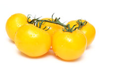 Tomates jaunes d'héritage Photographie stock libre de droits