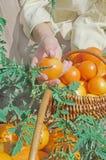 Tomates jaunes récemment récoltées Photos stock